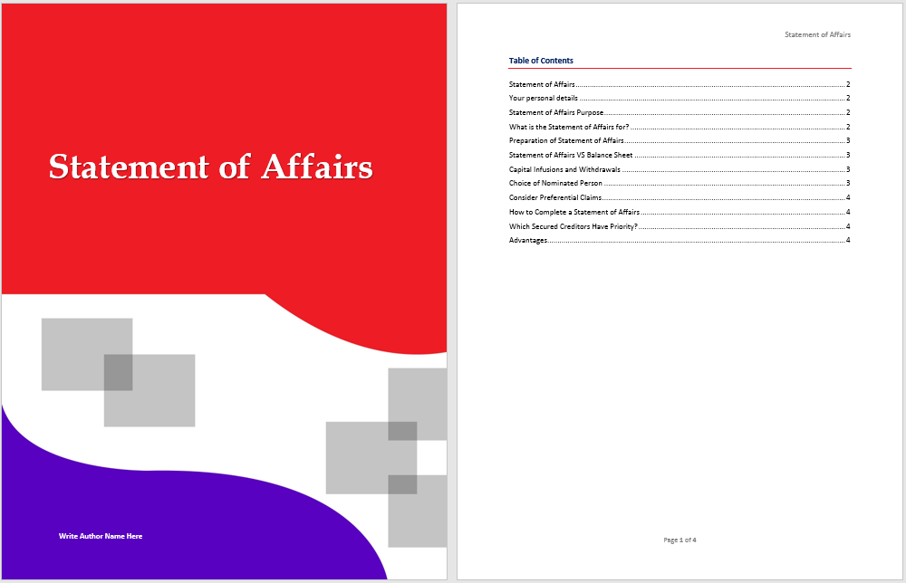 Statement of Affairs Template