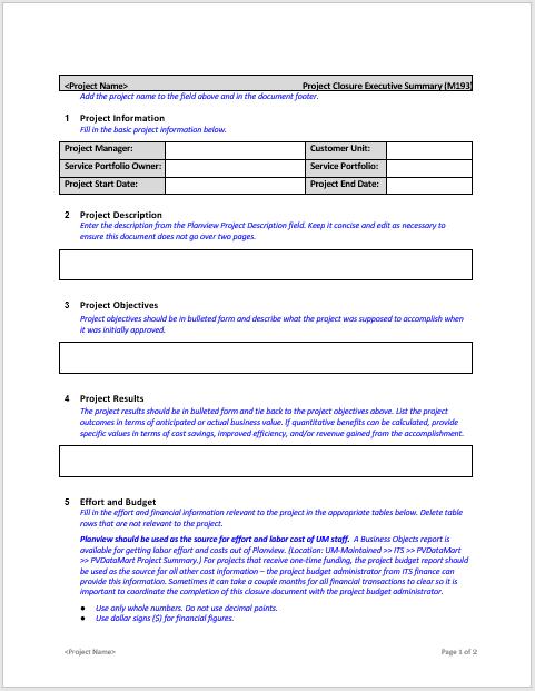 Executive Summary Template 03