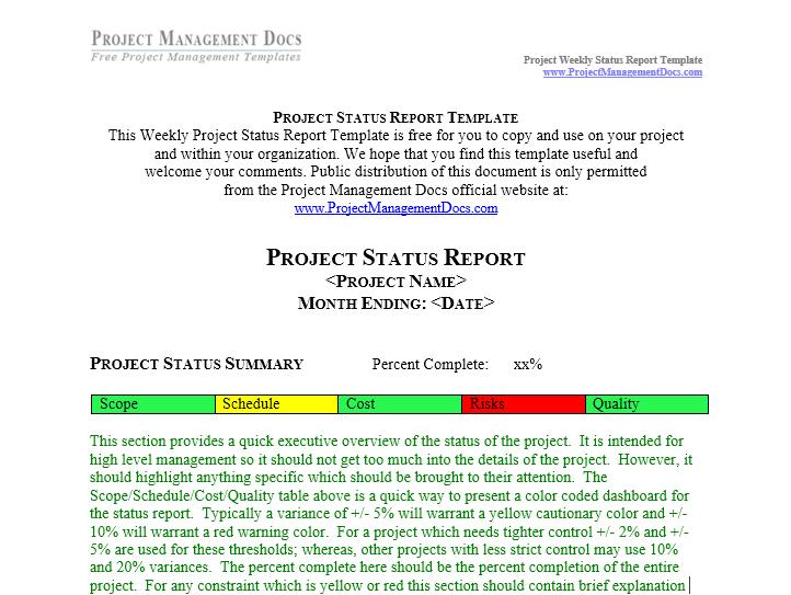 status report template 11
