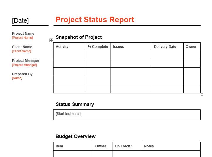 status report template 12