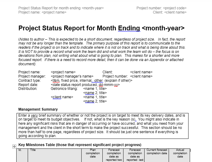 status report template 24