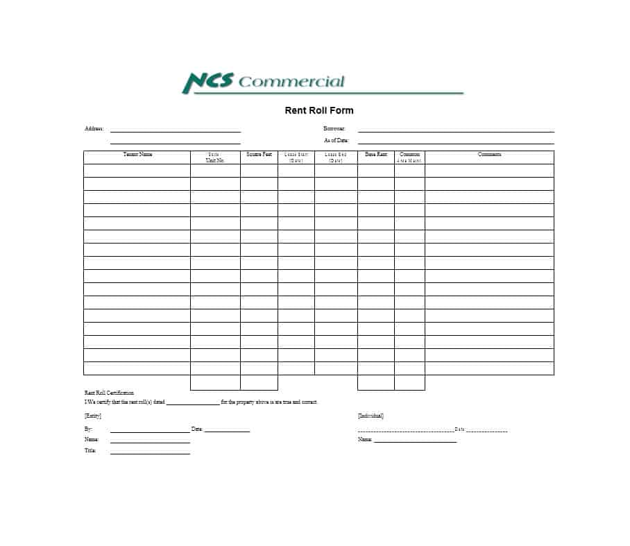 Rent Roll Template 27