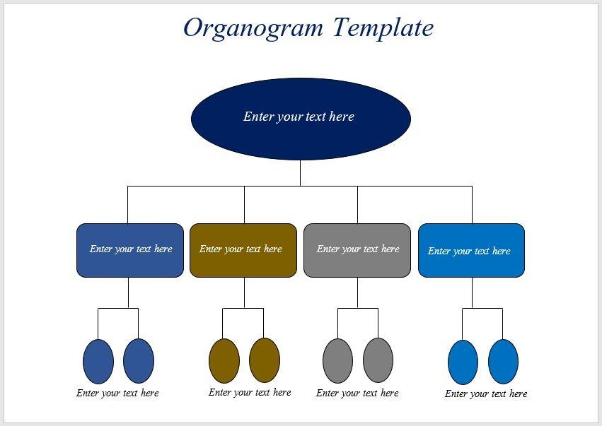 organogram template 04